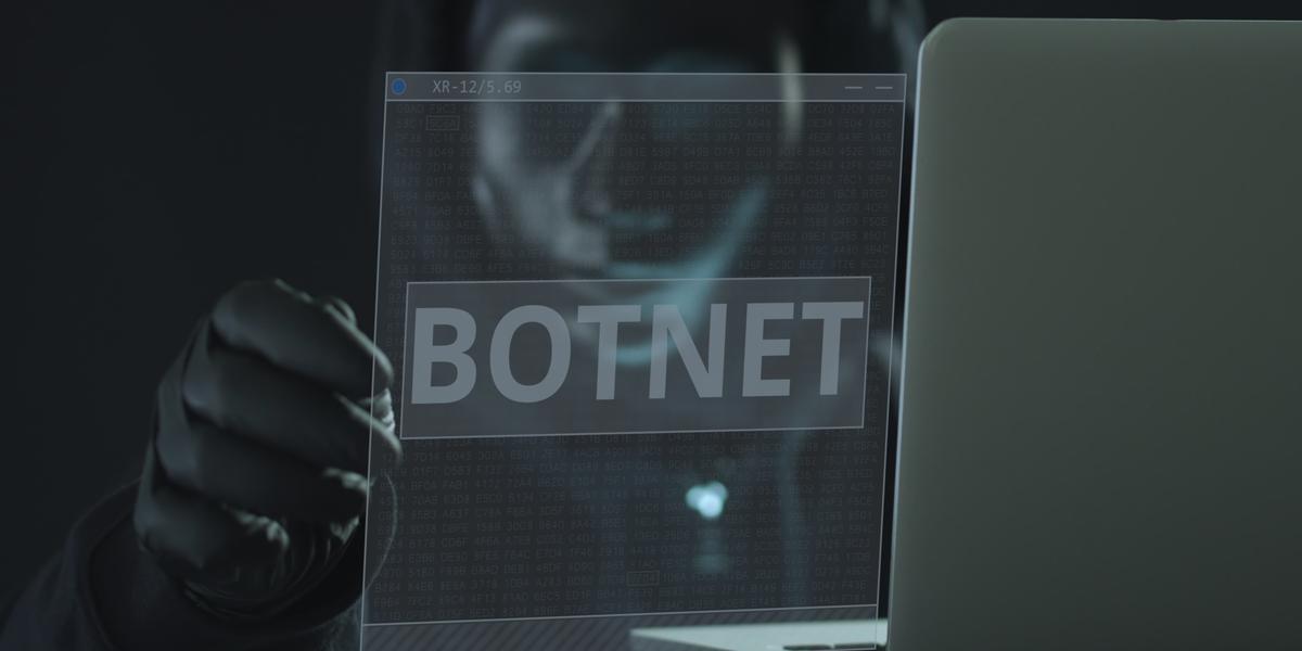 botnet fraud